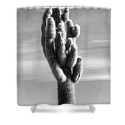 Cactus Island Salt Flats Black And White Shower Curtain