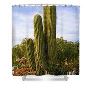 Cactus Monterey California Shower Curtain
