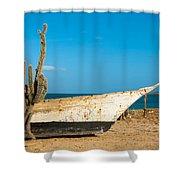Cactus On A Beach Shower Curtain