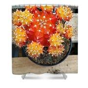 Cactus Orange Shower Curtain