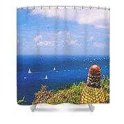 Cactus Overlooking Ocean Shower Curtain