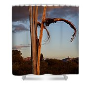Cactus Ribs Shower Curtain