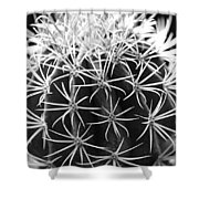 Cactus Thorn Pattern Shower Curtain