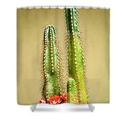 Cactus Towers Shower Curtain
