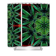 Cactus Triptych Shower Curtain