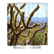 Cactus View Shower Curtain