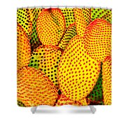 Cactus With Sunset Glow Shower Curtain