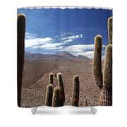 Cactus With The Andes Mountains Shower Curtain
