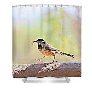 Cactus Wren With Worm Shower Curtain