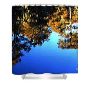 Caddo Lake Reflections Shower Curtain