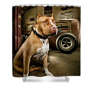 Caesar At Millers Chop Shop Shower Curtain