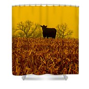 Cafe Du Mais Shower Curtain