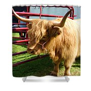 Caged Coo Shower Curtain