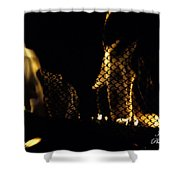 Caged Fire Shower Curtain