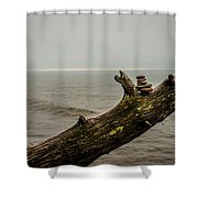 Cairn On Superior Shower Curtain
