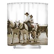 Caison Shower Curtain