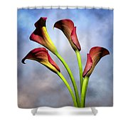 Cala Lili 6 Shower Curtain