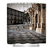Calahorra Cathedral And Palace Shower Curtain