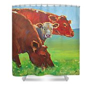 Calf And Cows Painting Shower Curtain