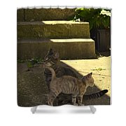 Cali And Hadon Shower Curtain