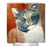 Calico Cat Shower Curtain by Karen Zuk Rosenblatt