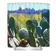 California Big Sur Flowers Shower Curtain