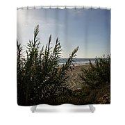 California Carlsbad Beach Hidden View Shower Curtain