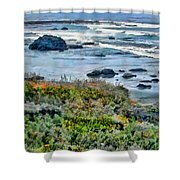 California Central Coast Near San Simeon Shower Curtain
