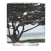California Coast # 8 Shower Curtain