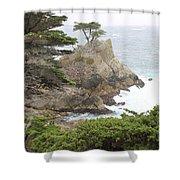 California Coast # 9 Shower Curtain