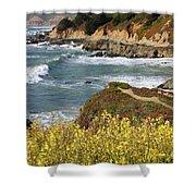 California Coast Overlook Shower Curtain