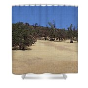 California Grass And Oak Trees Shower Curtain