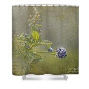 California Lilac Shower Curtain