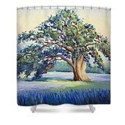California Oak Shower Curtain