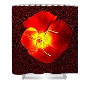California Poppy By Nadine Johnston Shower Curtain