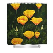 California Poppy Shower Curtain by Veikko Suikkanen