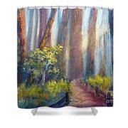 California Redwoods Shower Curtain