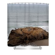 California Rock Shower Curtain