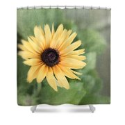 Call Me Mellow Yellow Shower Curtain