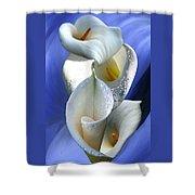 Calla Composition Shower Curtain