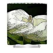 Calla Lily Sketch Shower Curtain