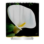 Calla Lily Spectacular Shower Curtain