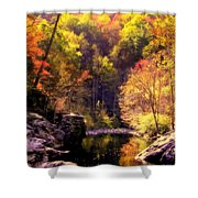 Calling Me Home Shower Curtain by Karen Wiles