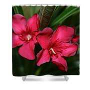 Calpoly Flowers By Diana Sainz Shower Curtain