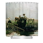 Calves At A Pond, 1863 Shower Curtain