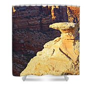 Camel Rock Shower Curtain