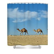 Camel Train Shower Curtain