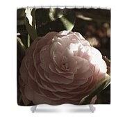 Camellia 2 Shower Curtain