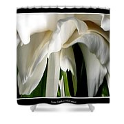 Camellia Abstract Shower Curtain