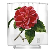 Camellia Shower Curtain by Richard Harpum
